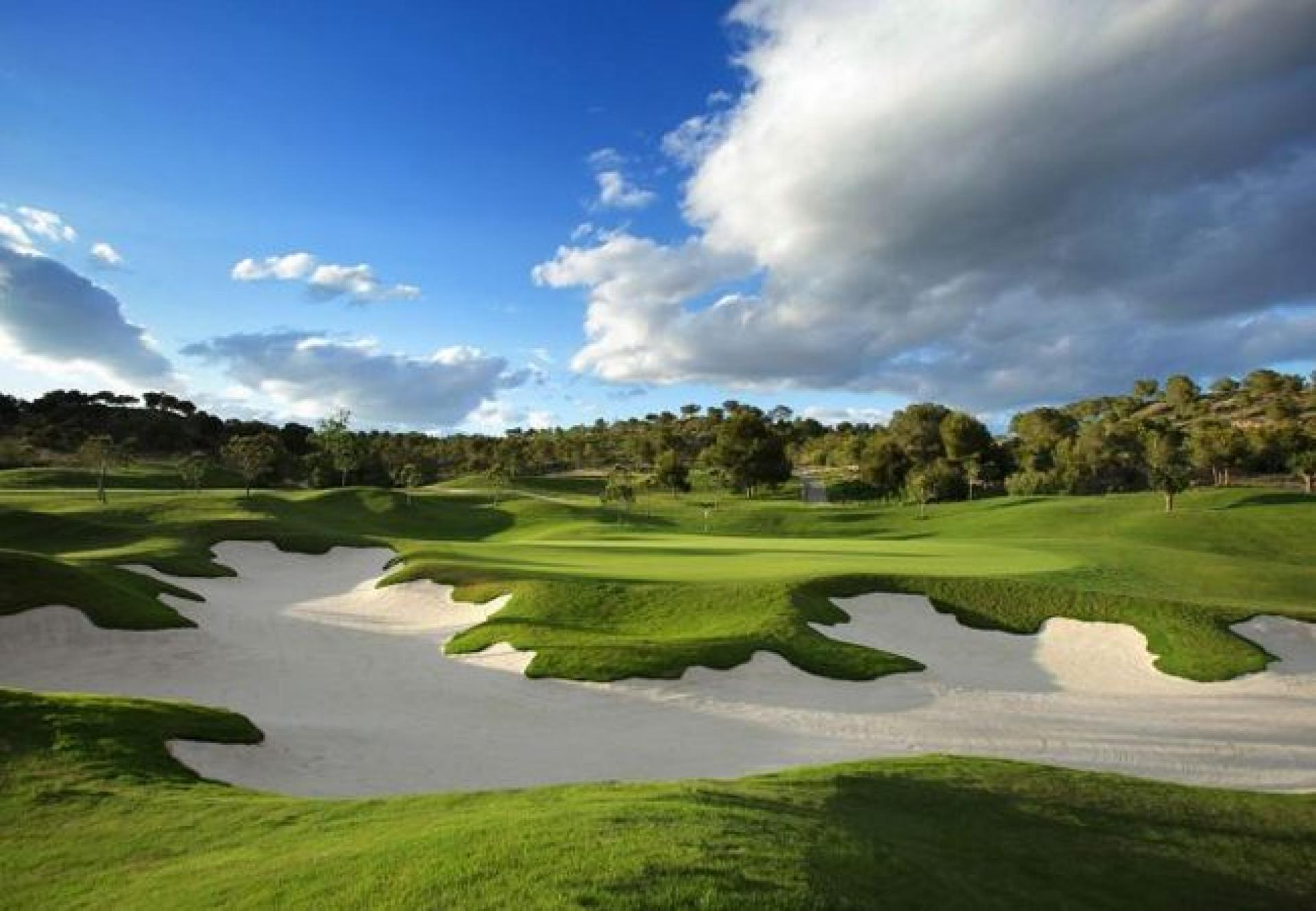 Madrono - Las Colinas Golf (Campoamor)